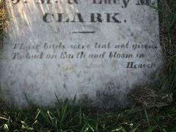 Frank M Clark