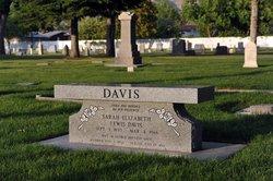 Sarah Elizabeth <I>Lewis</I> Davis