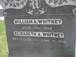 Elizabeth A Whitney