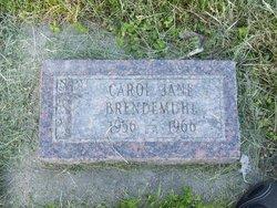 Carol Jane Brendemuhl