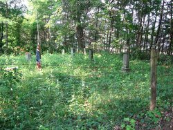 Lovelace-Dees Cemetery