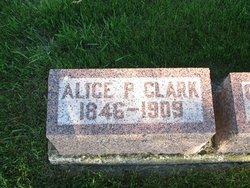 Alice P Clark