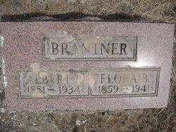 Albert P Brantner
