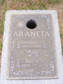 Napoleon Lozada Araneta