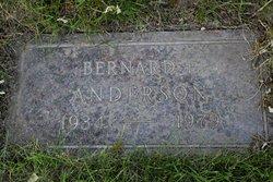 Bernard Elmer Anderson