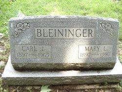 Mary Lucile <I>Smart</I> Bleininger