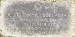 PFC Anthony J Bellavia