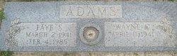 Faye S Adams