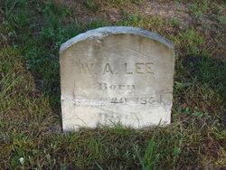 William A Lee