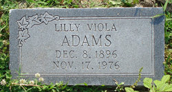 Lilly Viola Adams