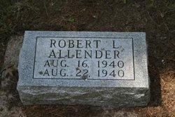 Robert L. Allender