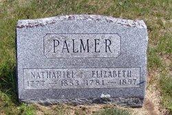 Elizabeth <I>Lott</I> Palmer