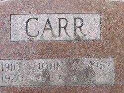 Viola Grayce <I>Hayes</I> Carr