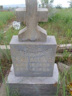 Arlulfo R Saldivar