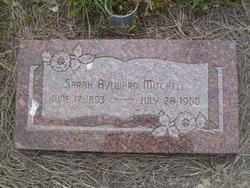 Sarah Aylward Mitchell