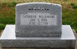 Catherine M Willenborg
