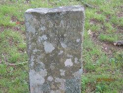 Mary Minerva <I>Cotton</I> Bohannan
