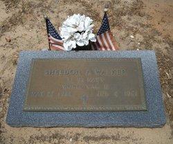 Sheldon Avery Walker