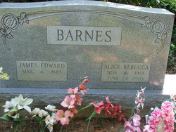 James Edward Barnes