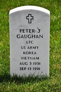 Peter J Gaughan