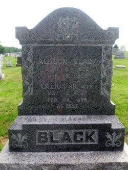 Allison Black