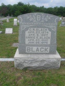 Annie E <I>Williams</I> Black