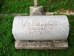 Julius Adams