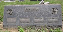 William John Aring