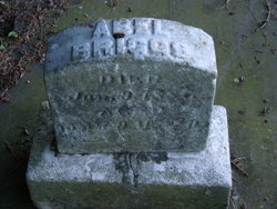 Abel Briggs