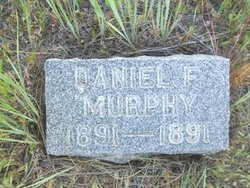 Daniel F Murphy