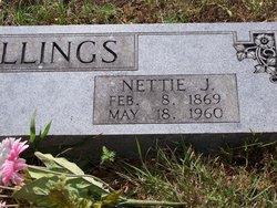 Nettie Jane <I>Barnett</I> Billings