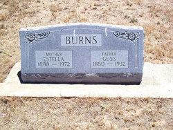 Walter Augustus Burns