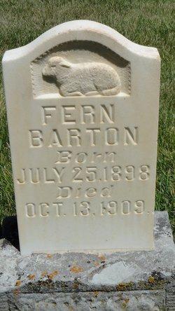 Fern Barton
