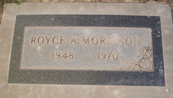 Royce A Morrison