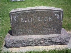 Bernie Edward Ellickson
