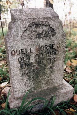 Odell Nathaniel Morse, Jr