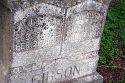 Lizzie Gibson