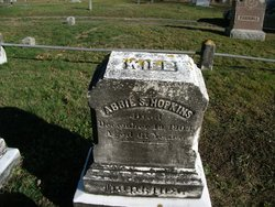 Abbie S Hopkins