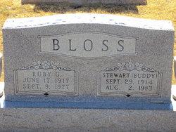 """Stewart """"Buddy"""" Bloss"""