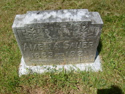 Amelia Sauer