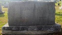 Calvin S. Berkheimer