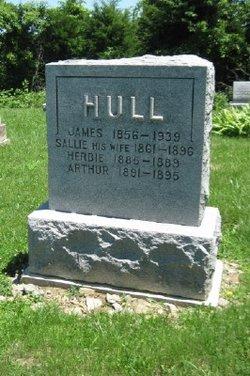 Sarah Sallie <I>Patterson</I> Hull