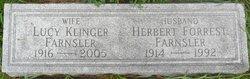 Lucy Mildred <I>Klinger</I> Farnsler