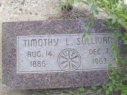 Timothy L Sullivan
