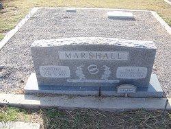 Sam J Marshall