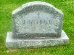 Daniel J Fitzgerald