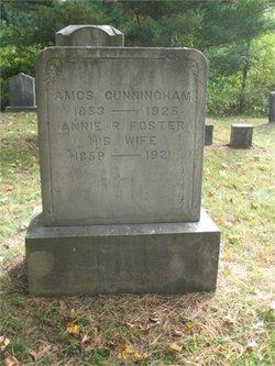 Annie Rebecca <I>Foster</I> Cunningham