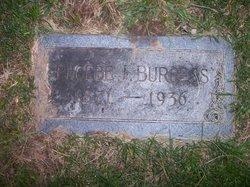 Phoebe J <I>Welch</I> Burgess