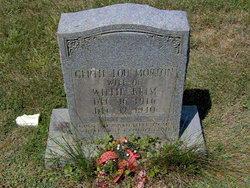 Gertie Lou <I>Morton</I> Brim