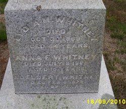 Anna F Whitney